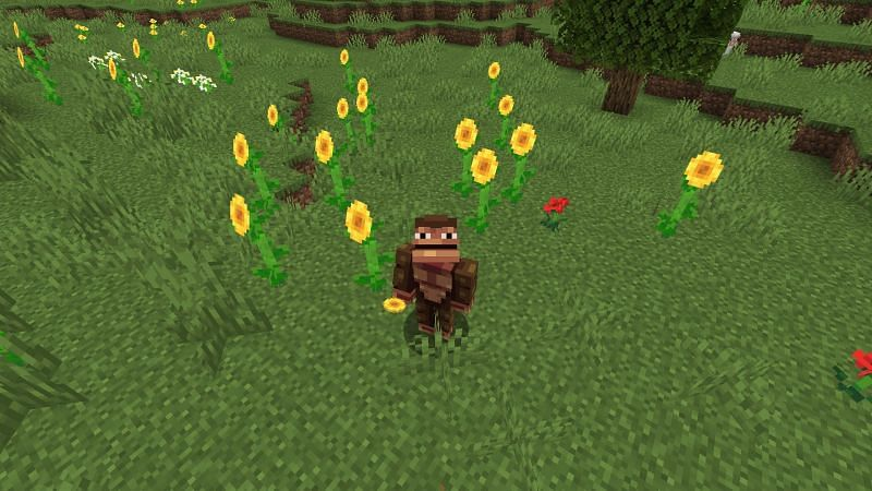 Sunflower fields forever (Image via Minecraft)