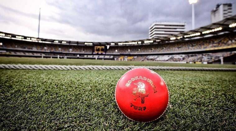 डे-नाईट टेस्ट में गुलाबी गेंद का इस्तेमाल होता है