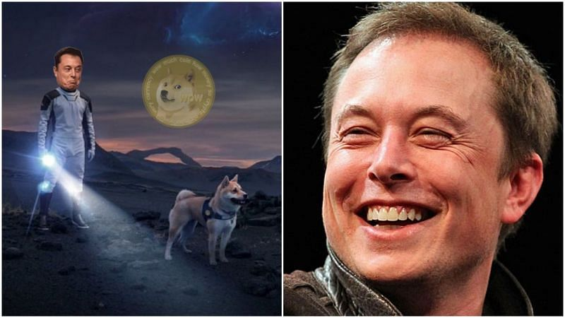 Image via Twitter & Elon Musk