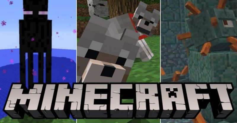 The rarest and least commonly known Minecraft mobs (Image via Reddit)