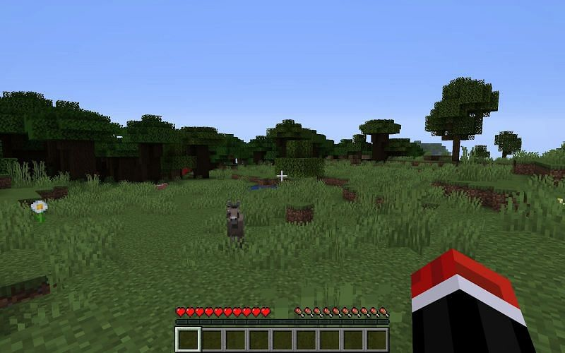 Lost in the vast world of Minecraft