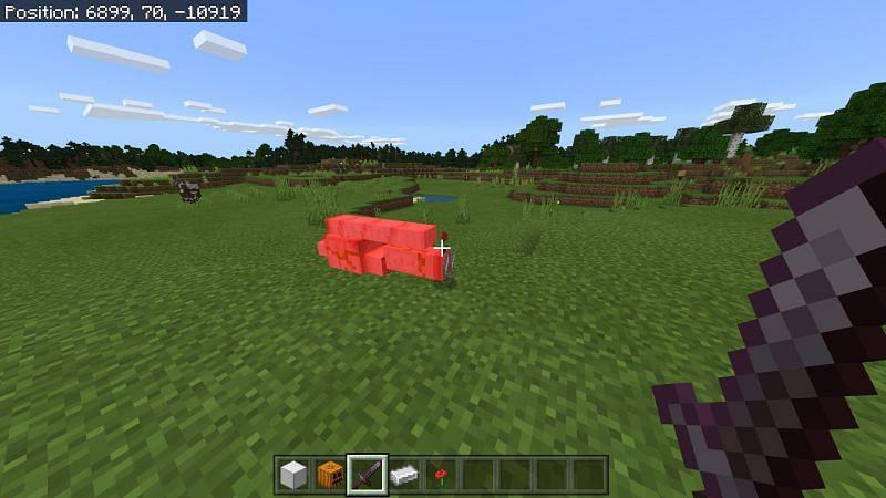 Iron Golem Drops in Minecraft