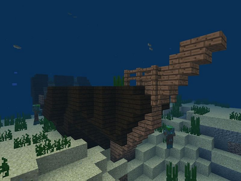 Shipwrecks are a common sight and worth exploring