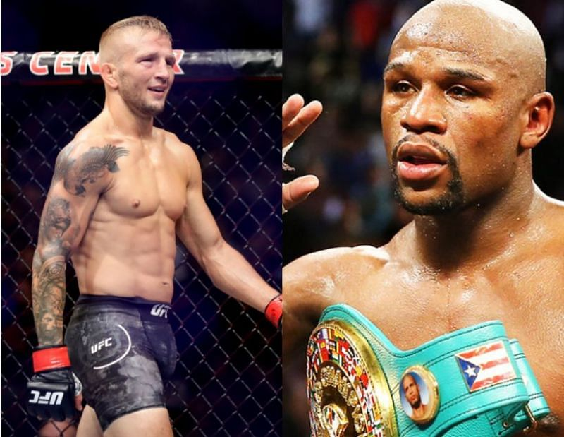 TJ Dillashaw is open to fighting Floyd Mayweather