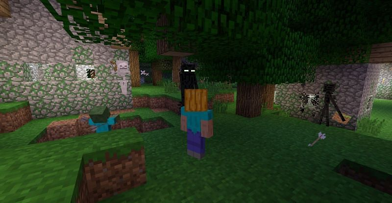 Wearing a pumpkin allows players to look at Endermen.