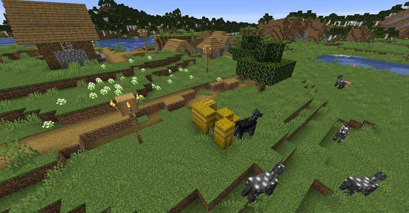 Hay bales found inside of a village in Minecraft. (Image via Minecraft)