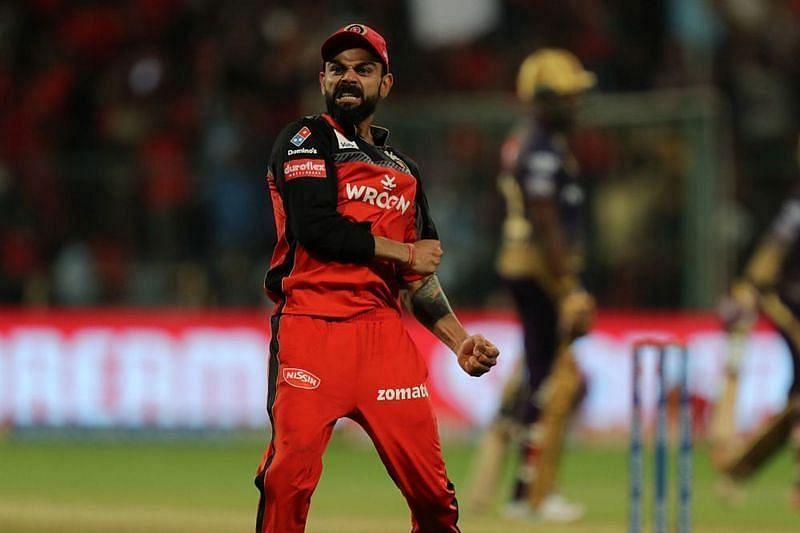 Virat Kohli celebrates a wicket for the Royal Challengers Bangalore (RCB)