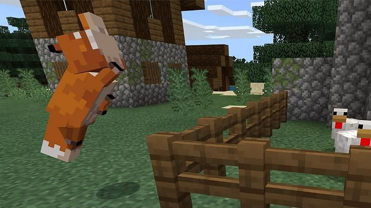 Minecraft foxes attacking