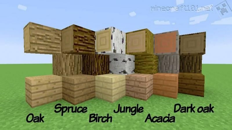 Minecraft Logs