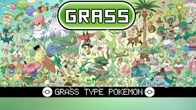 Grass-type Pokemon are both loved and hated; some are more disliked than others (Image via Tom Salazar)
