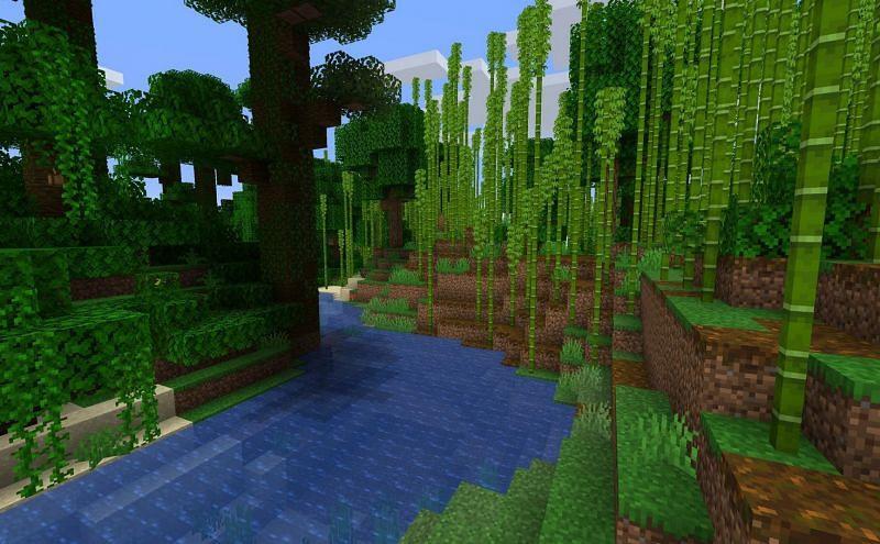 Bamboo Jungle (Image via Minecraft)