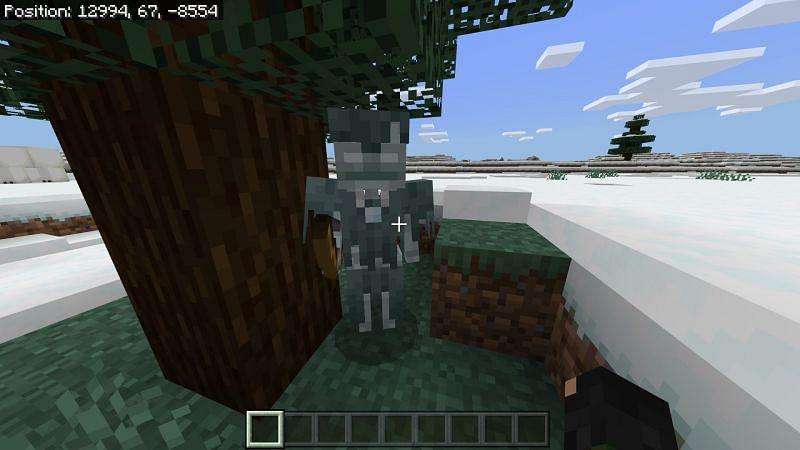 Minecraft Stray