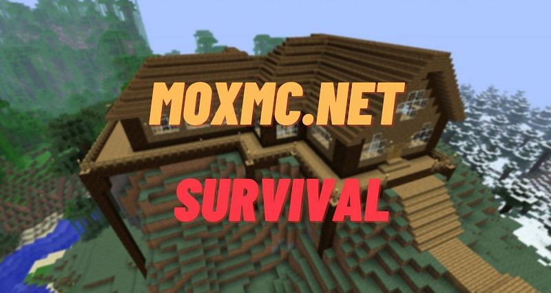 Mox MC offers players a brilliant survival experience