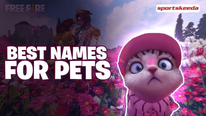 There are currently 13 pets in Garena Free Fire