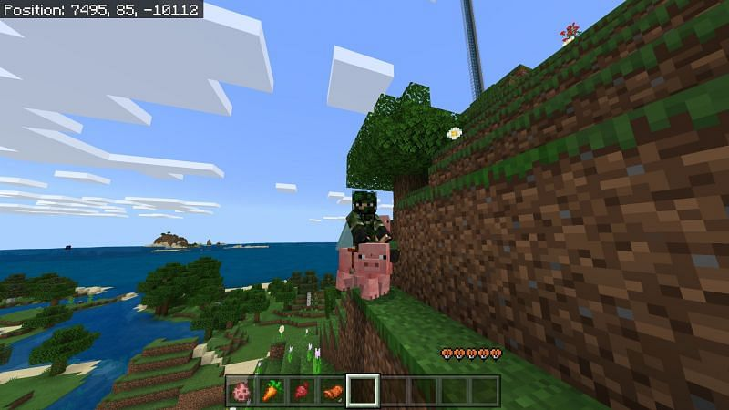 Riding a minecraft pig