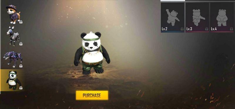 Detective Panda in Free Fire.