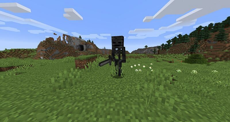 Wither skeletons have a dark and creepy appearance.