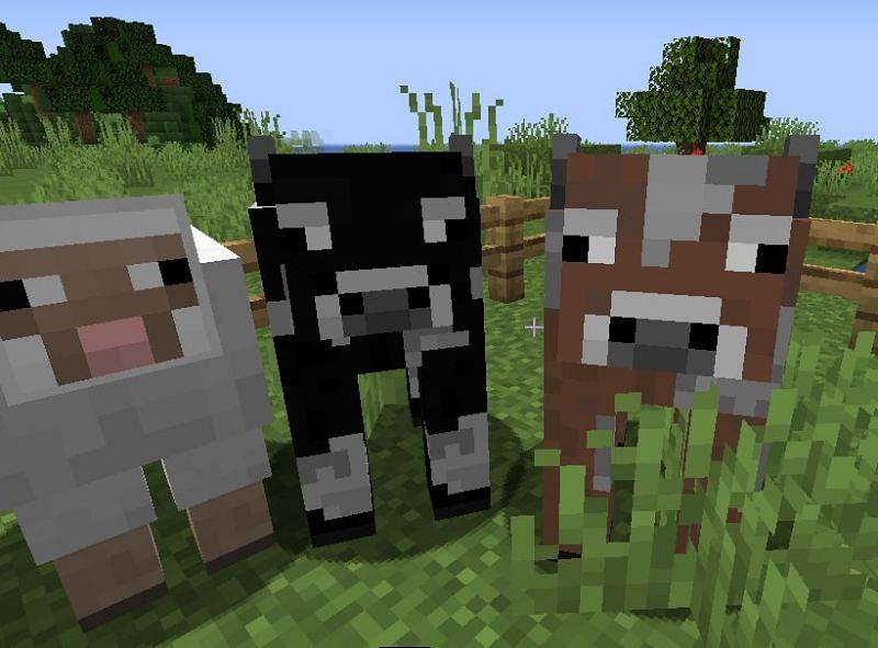 Mob Variants Mod for Java; Image via Minecraft