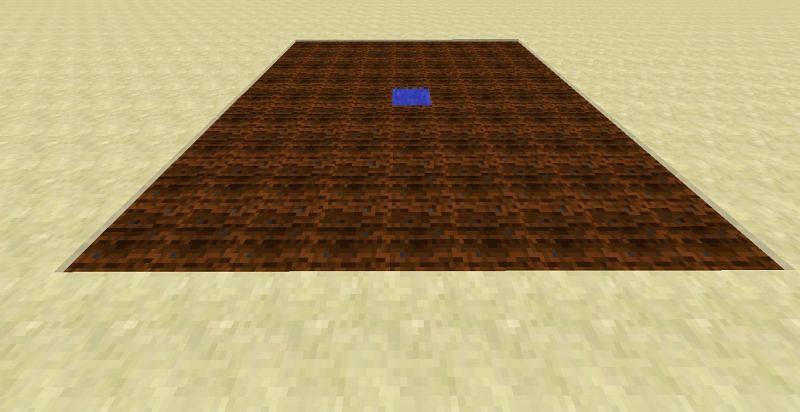 Minecraft Farmland