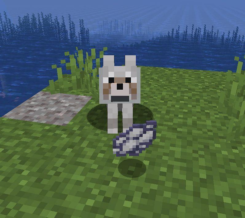 Image via Minecraft