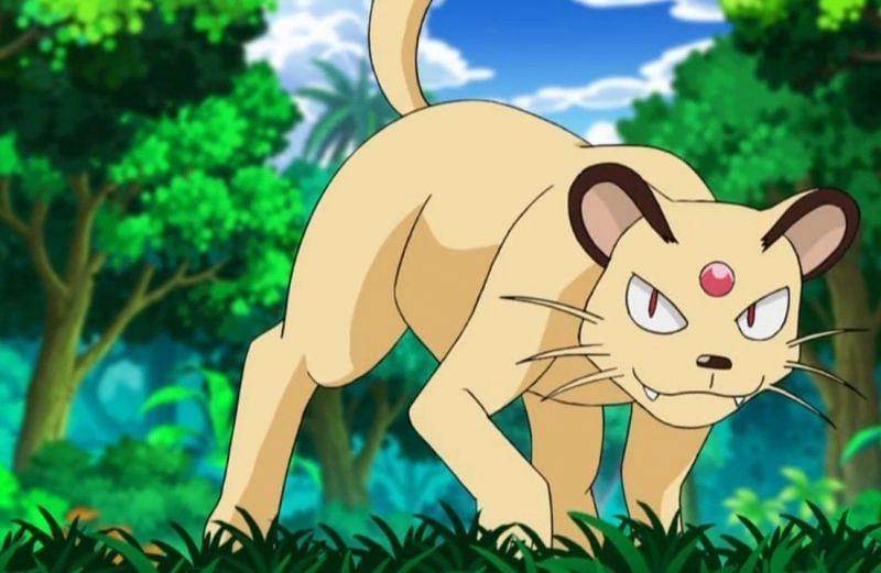 Persian in the anime (Image via The Pokemon Company)