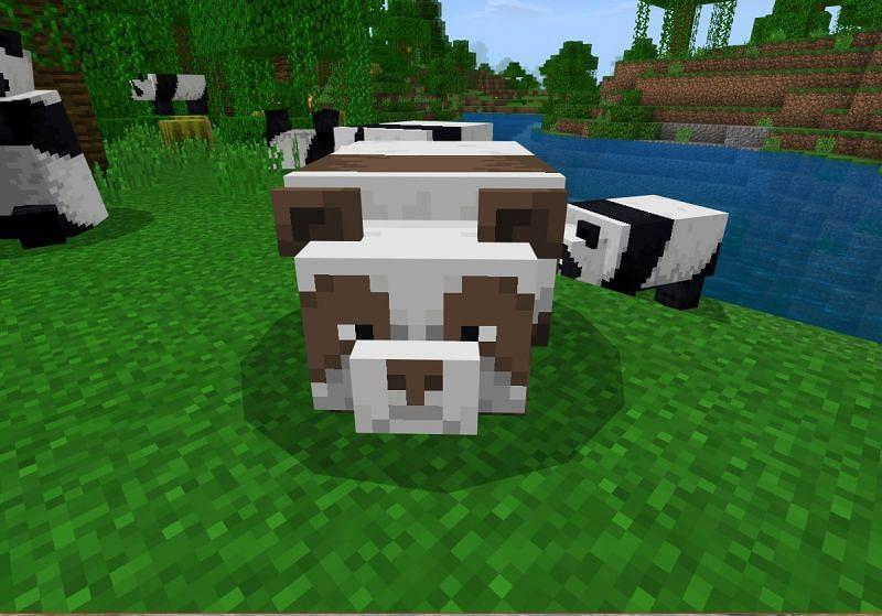 Brown Panda in Minecraft