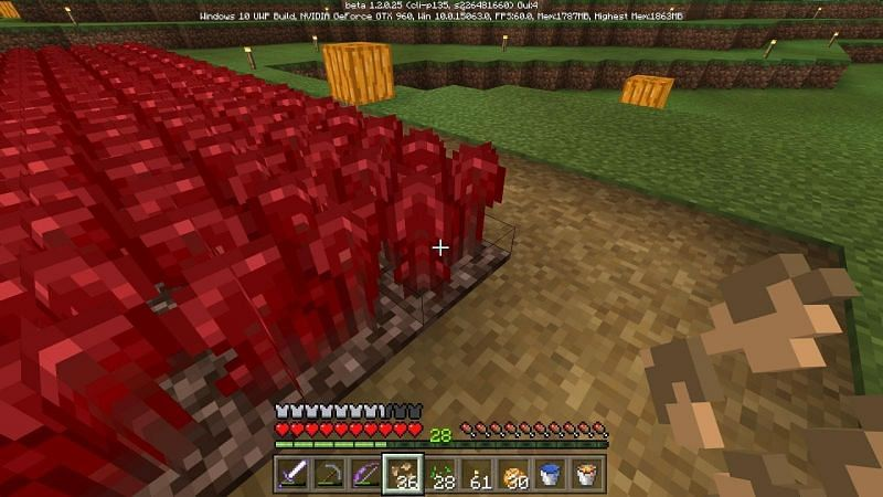 Plant the Nether warts
