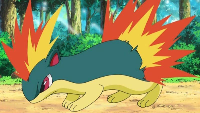 Quilava (Image via The Pokemon Company)