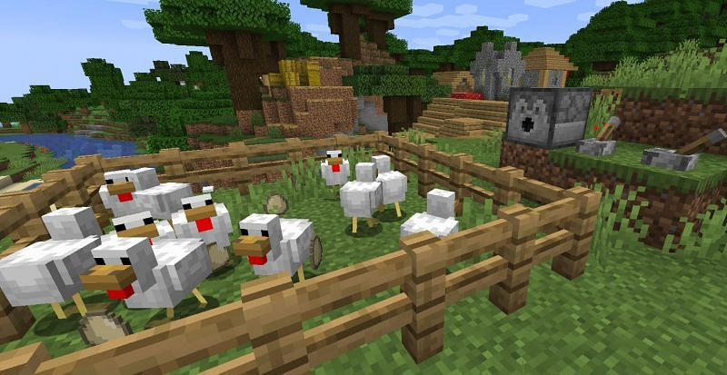 Shown: A dispenser shoots eggs into a chicken farm (Image via Minecraft)