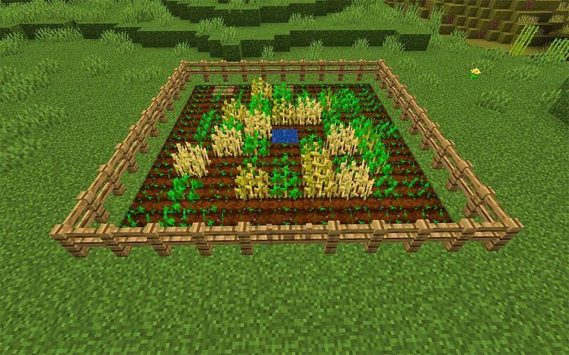 Small Minecraft wheat farm (Image via 12tails)