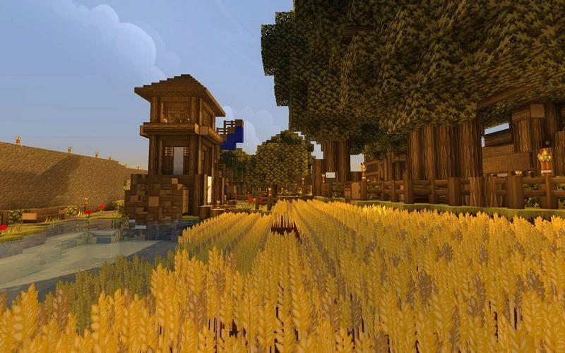 Minecraft wheat farm with shaders (Image via deviantart)