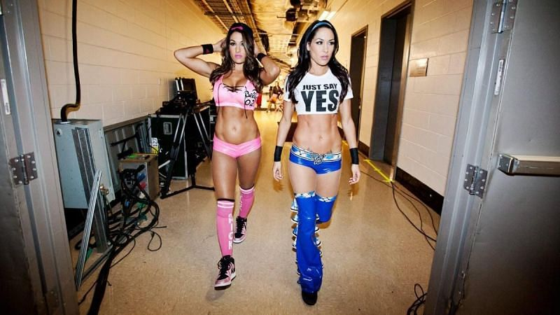 Nikki Bella and Brie Bella both held the Divas Championship as singles competitors