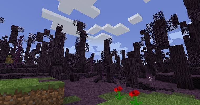 New Minecraft RLCraft biome (Image via androidgram)