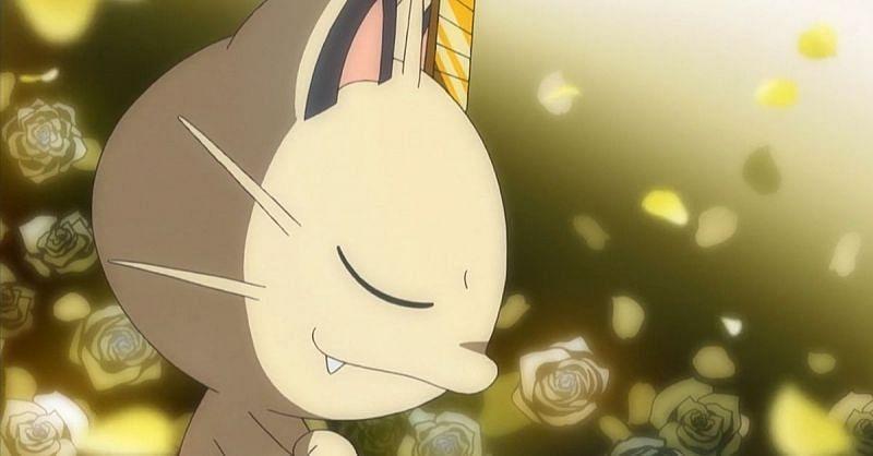 Meowth (Image via The Pokemon Company)