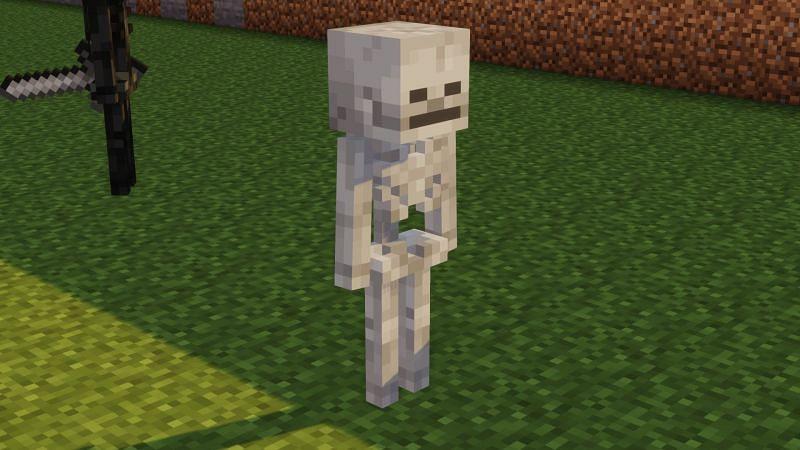 A cool Skele man! (Image via u/ewanhowell5195 on Reddit)