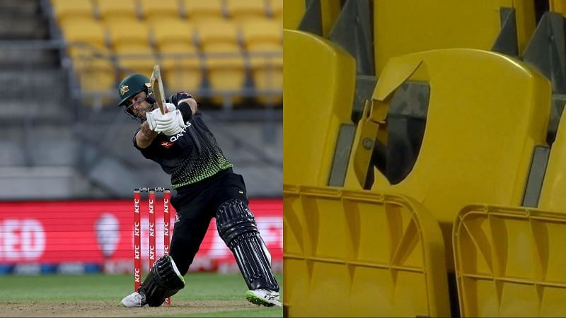 Glenn Maxwell destroyed the Kiwi bowlers in Wellington today