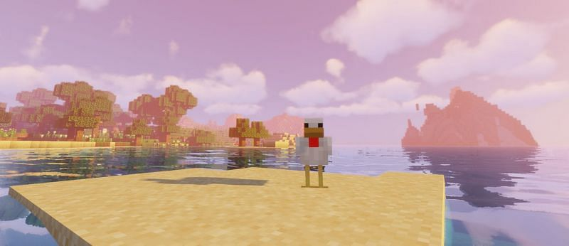 Shown: A lonely chicken searching for a partner (Image via Minecraft)