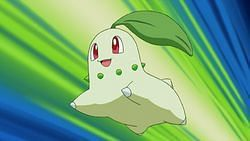 Chikorita (Image via The Pokemon Company)