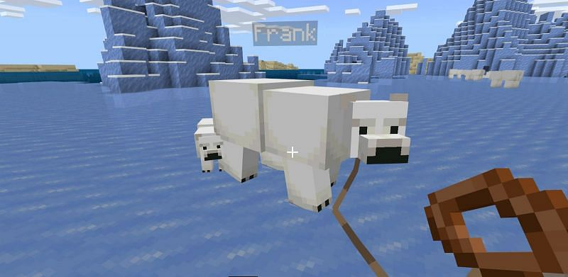 After that, use the lead on the Polar bear and it will then follow you around wherever you go.
