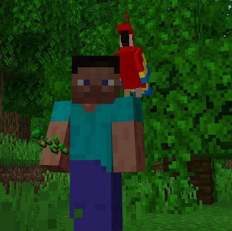 Like many pets that you tame, a parrot will follow you until you press the use button on them which will command them to sit and stay in place.