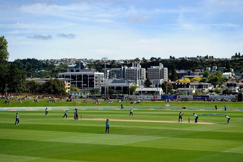 Dunedin has been a high-scoring venue