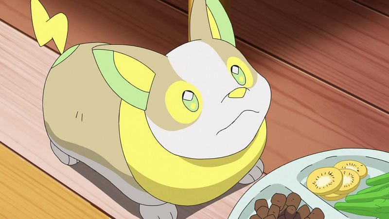 Yamper in the anime (Image via The Pokemon Company)