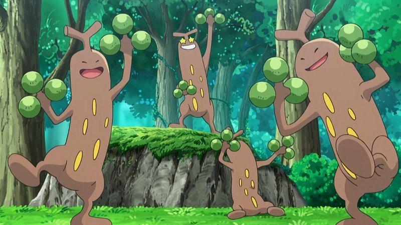 Sudowoodo squad (Image via The Pokemon Company)