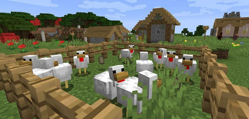 A small chicken farm still produces tons of eggs (Image via Minecraft)