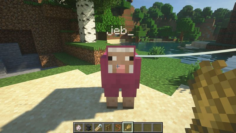 A color-changing sheep! (Image via Minecraft)