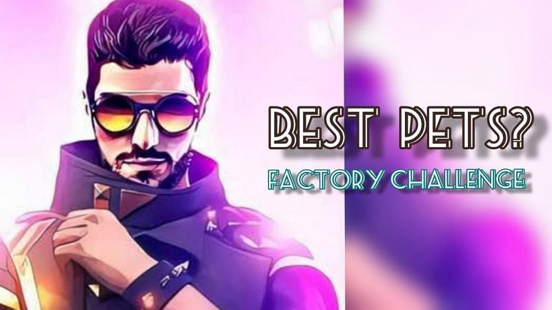Listing three best pets for DJ Alok in the Factory Challenge (Image via Sportskeeda)