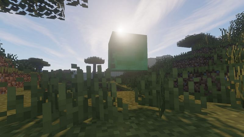Find any Slimes yet? (Image via Minecraft)