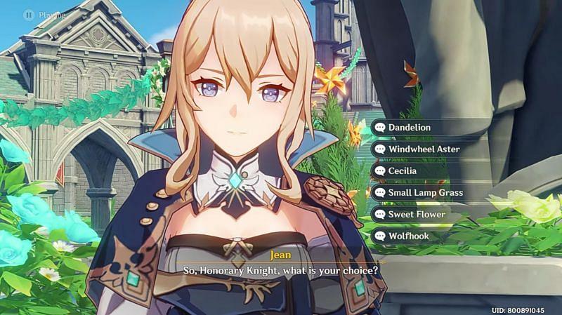 Windblume choices (Image via Bluemeat, YouTube)