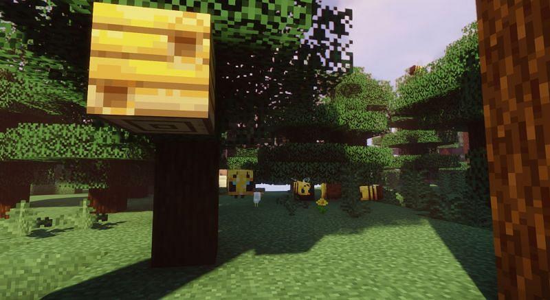 Bees contribute to the growth of the Overworld in Minecraft (Image via Minecraft)