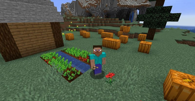 How To Get Beetroot Seeds In Minecraft Pe 3 Steps Instructables